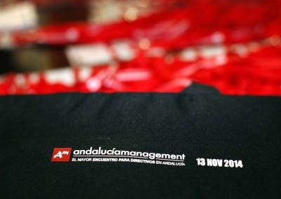Galeria-Andalucia-Management-2014-03